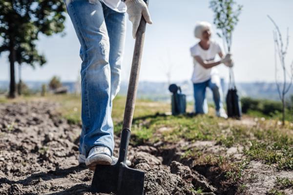 Cómo cuidar el ecosistema - Protección del suelo