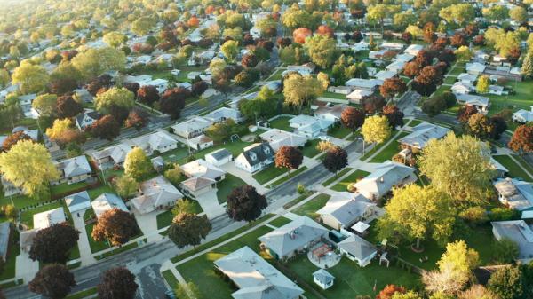 Beneficios de los árboles - Los árboles ayudan a ahorrar energía