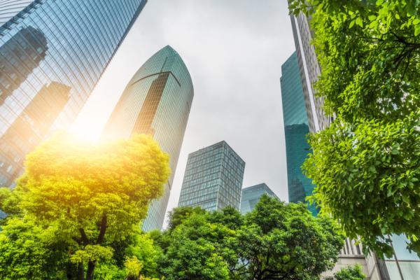 Beneficios de los árboles - Los árboles ayudan a bajar la temperatura
