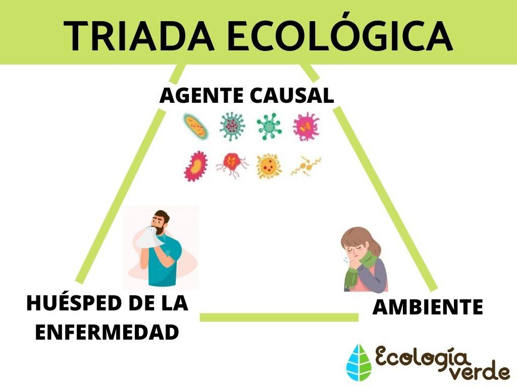 triada ecologica de la diabetes