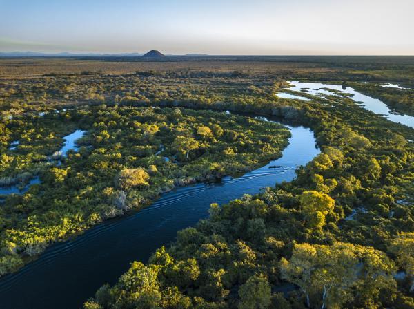 Diversidad de ecosistemas: qué es y ejemplos - Diversidad de ecosistemas y biodiversidad