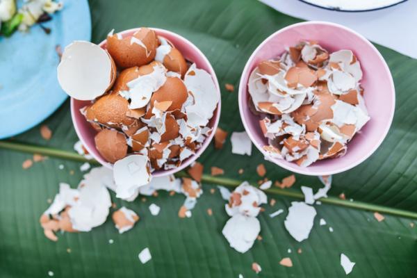 Cáscara de huevo para las plantas: para qué sirve y cómo usarla - Cómo preparar calcio con cáscara de huevo para las plantas