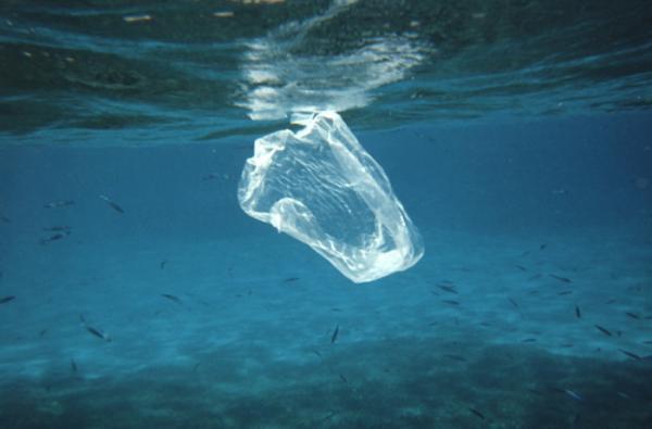 Consejos para reducir el uso de plásticos y envases - Por qué es importante reducir el uso de plásticos y envases