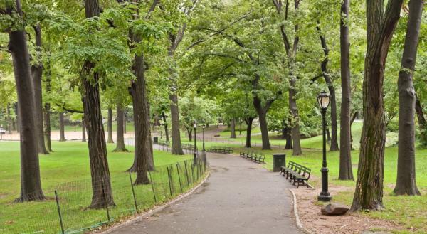 Turismo sostenible en Nueva York - Turismo verde