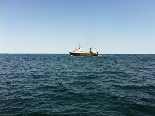 Por qué se llama Mar Negro - ¿El Mar Negro es navegable?