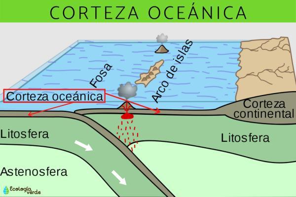 Corteza oceánica: qué es y características