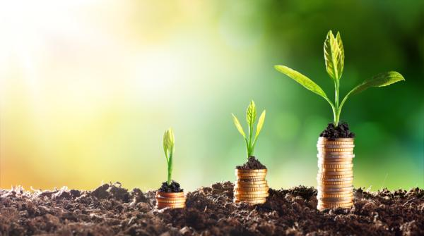 Qué es la bioeconomía: definición y ejemplos