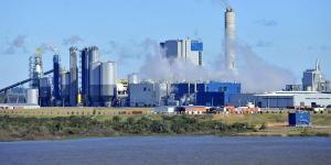 Cuál es el impacto ambiental del consumo de papel