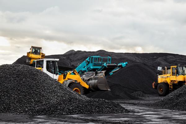 Cómo se forma el carbón - Cómo se obtiene el carbón mineral