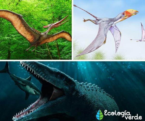 Dinosaurios carnívoros: nombres, tipos, características e imágenes - Dinosaurios carnívoros de Jurassic Park y Jurassic World - lista de ejemplos