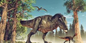 Dinosaurios carnívoros: nombres, tipos, características e imágenes