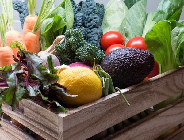 Qué son los vegetales