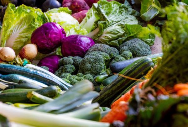 Qué son los vegetales - Tipos de vegetales