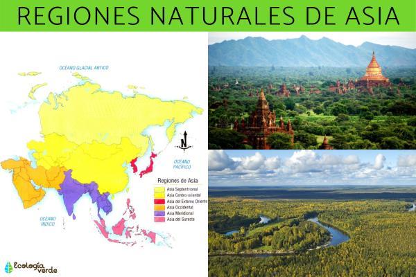 Regiones naturales de Asia