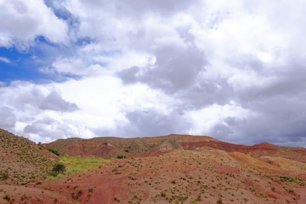 Las ecorregiones de Bolivia y sus características - Puna seca montano boliviano