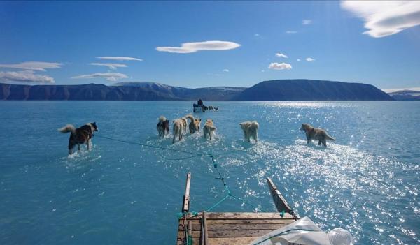 Qué son los glaciares - Groenlandia sufre un deshielo masivo