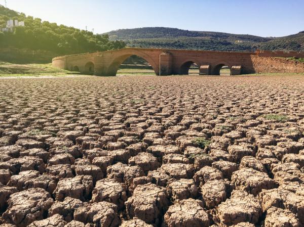 Problemas ambientales en Chile - Degradación, pérdida y contaminación de suelos