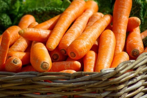 ¿Qué hortalizas plantar en verano? - Zanahorias