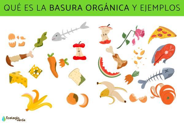 Qué es la basura orgánica y ejemplos