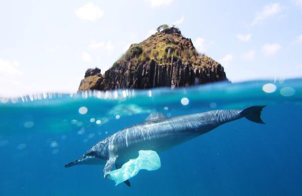 Cuáles son los desperdicios más difíciles de reciclar - Bolsas de plástico