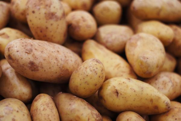 Tipos de patatas - Patata Spunta