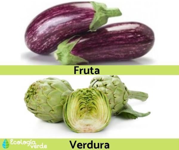 Diferencia entre fruta y verdura - Diferencia entre fruta y verdura – resumen