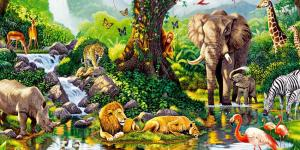 Biotopo: qué es y ejemplos