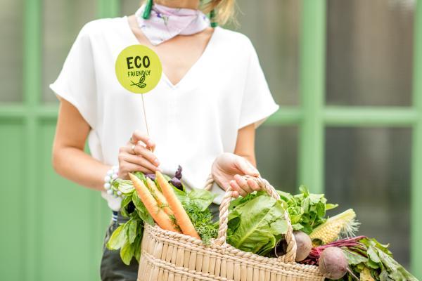 Productos ecológicos: qué son y ejemplos