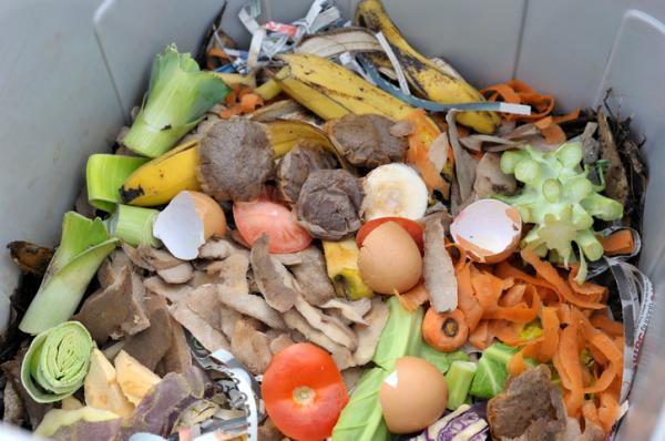 Qué se recicla en el contenedor marrón - Qué se consigue con la materia orgánica reciclada en el contenedor marrón