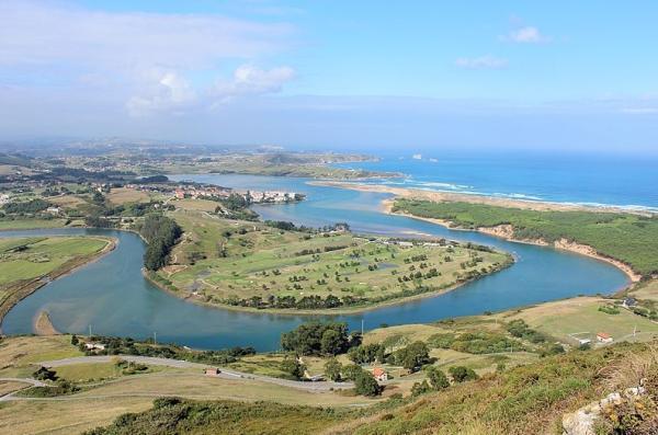 Estuarios: características, tipos, flora y fauna - Tipos de estuarios