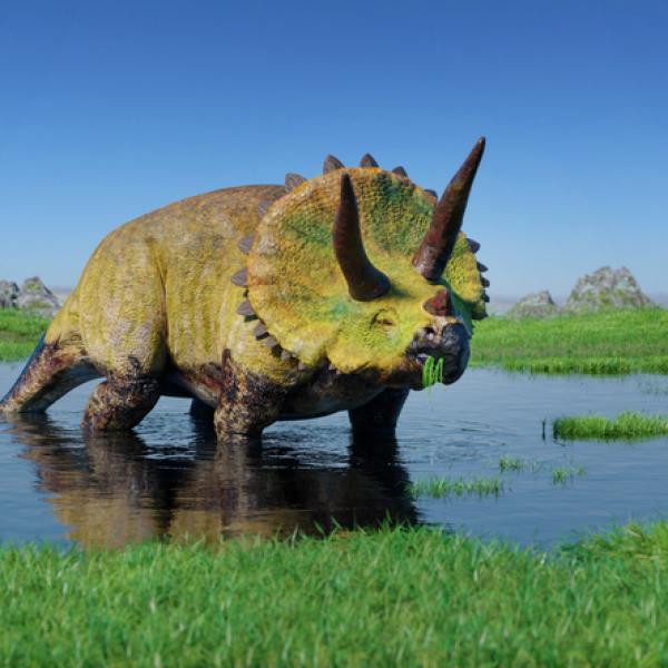 Dinosaurios Herbivoros Nombres Tipos Caracteristicas E Imagenes ¡juega a juegos de dinosaurios desde macrojuegos.com! dinosaurios herbivoros nombres tipos