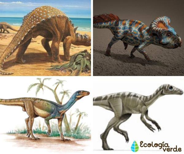 Dinosaurios Herbivoros Nombres Tipos Caracteristicas E Imagenes Nombre de dinosaurios para niños. dinosaurios herbivoros nombres tipos