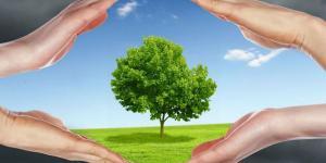 Soluciones para la contaminación del aire
