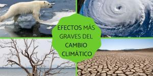 Efectos del cambio climático
