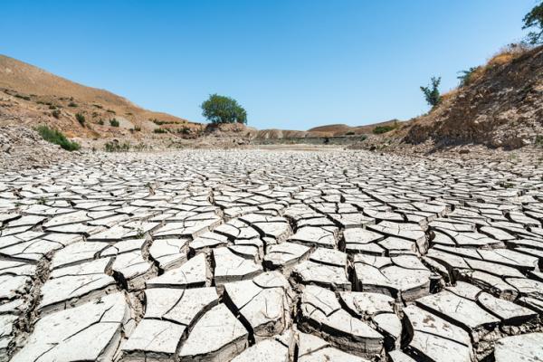 Efectos del cambio climático - Más sequías, desertificación y olas de calor