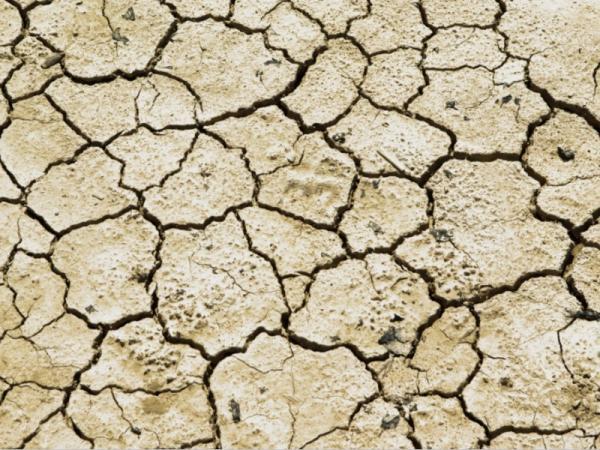 Qué es la sequía, sus causas y consecuencias - Qué clases de sequía existen
