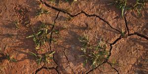 Qué es la sequía, sus causas y consecuencias