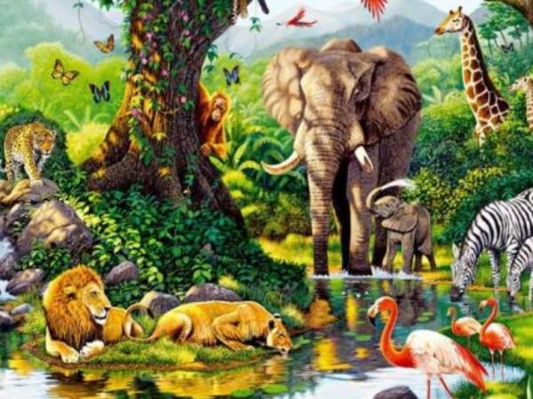 Comunidad biológica:qué es, estructura y ejemplos - Qué es una comunidad biológica - definición