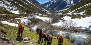Qué son los Parques Nacionales y Naturales y sus diferencias