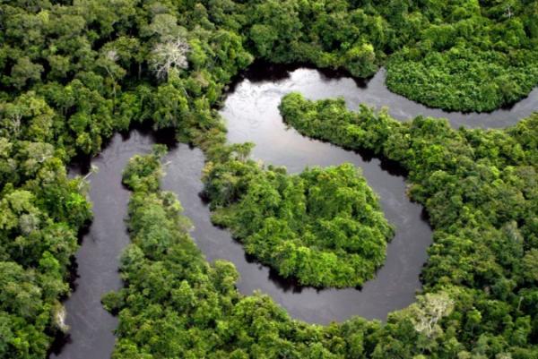 Cuáles son los ecosistemas del Ecuador - Ecosistemas terrestres del Ecuador