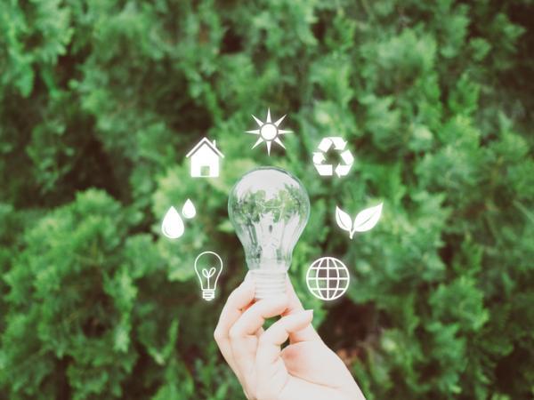 Servicios ecosistémicos: qué son, tipos y ejemplos - Qué son los servicios ecosistémicos o servicios ambientales