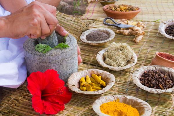 60 plantas medicinales del Perú y para qué sirven - Lista de plantas medicinales del Perú – nombres comunes y científicos