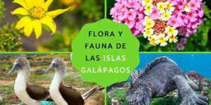 Flora y fauna de las Islas Galápagos