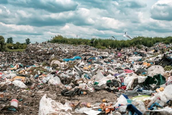 Consumismo: qué es, tipos, ejemplos y consecuencias - Consecuencias del consumismo en el medio ambiente