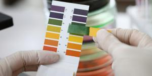 Cómo medir el pH de la tierra
