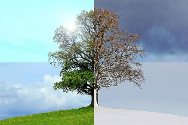 Por qué existen las estaciones del año