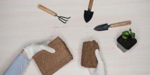 Fibra de coco para plantas: propiedades y cómo hacerla