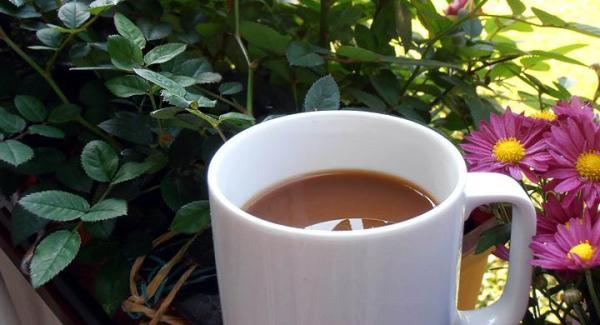 Maneras de utilizar los restos de café en el jardín - Aprovechar los posos del café para las plantas