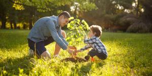 Cómo hacer fertilizantes orgánicos caseros