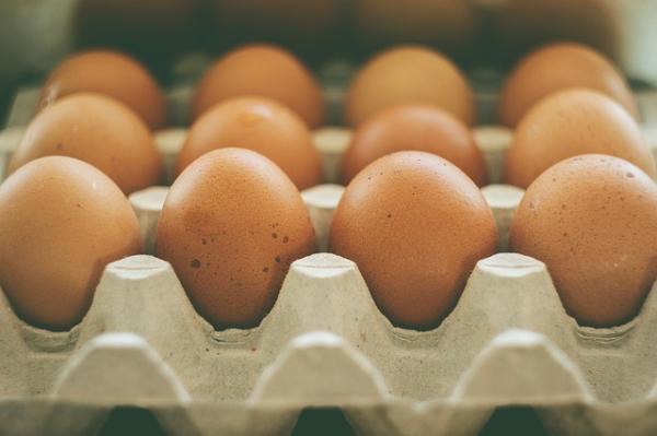 Cómo hacer fertilizantes orgánicos caseros - Cómo preparar fertilizante orgánico con calcio: cáscaras de huevo